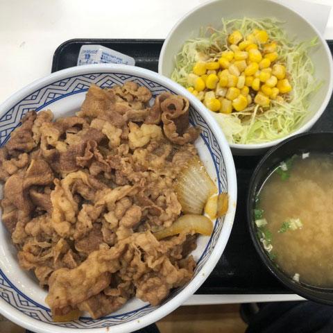 牛丼、サラダ、味噌汁